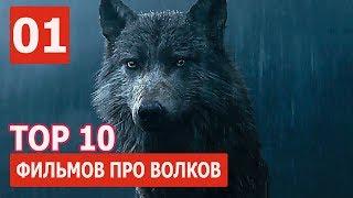 ★ Топ- 10 ЛУЧШИХ ФИЛЬМОВ ПРО ВОЛКОВ ✔️