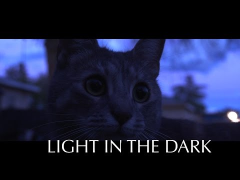 Light in the Dark (free documentary film about evil)