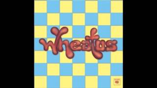 Watch Wheatus The Song That I Wrote When You Dissed Me video