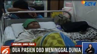Di Indonesia Demam Berdarah Dengue Lebih Mengerikan Dibandingkan Corona.