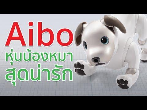 Aibo หุ่นหมาน้อยสุดน่ารัก ฉลาดแถมเปลี่ยนถ่ายความทรงจำได้ | Droidsans - วันที่ 12 Jan 2018