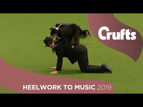 Freestyle Heelwork to Music Competition - Part 1 | Crufts 2019