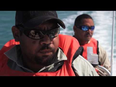 Aboriginal Documentary -  Carpentaria Land Council Aboriginal Corporation's Ranger Program