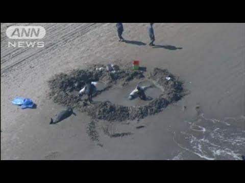 東日本 大震災 タブー