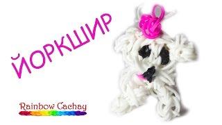 Плетение собачки Йоркшир. Плетение из резиночек loom bands. Плетение из резинок.
