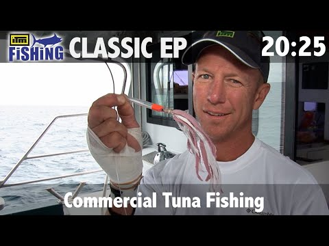Commercial Tuna Fishing, West Coast New Zealand