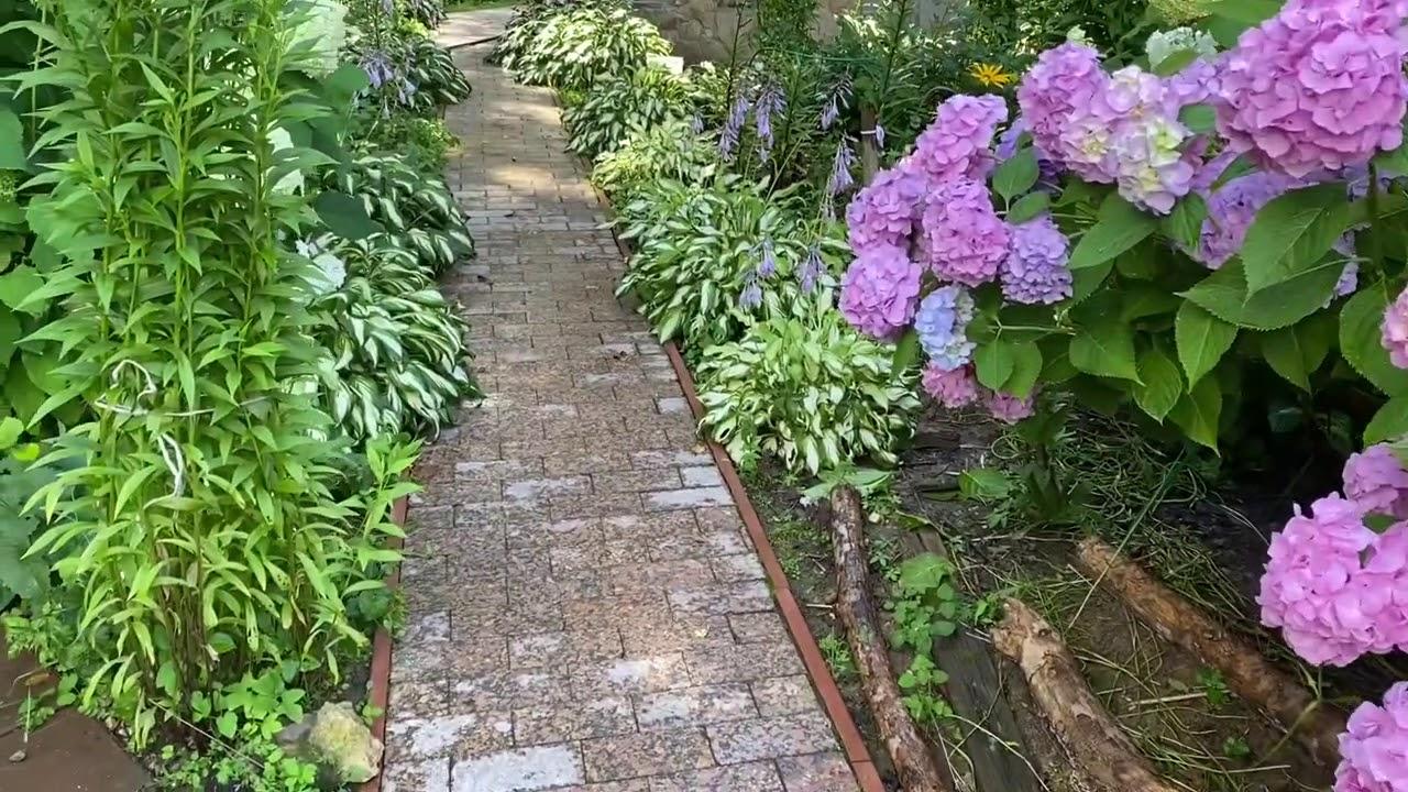 Мой любимый сад приносит мне хороший доход