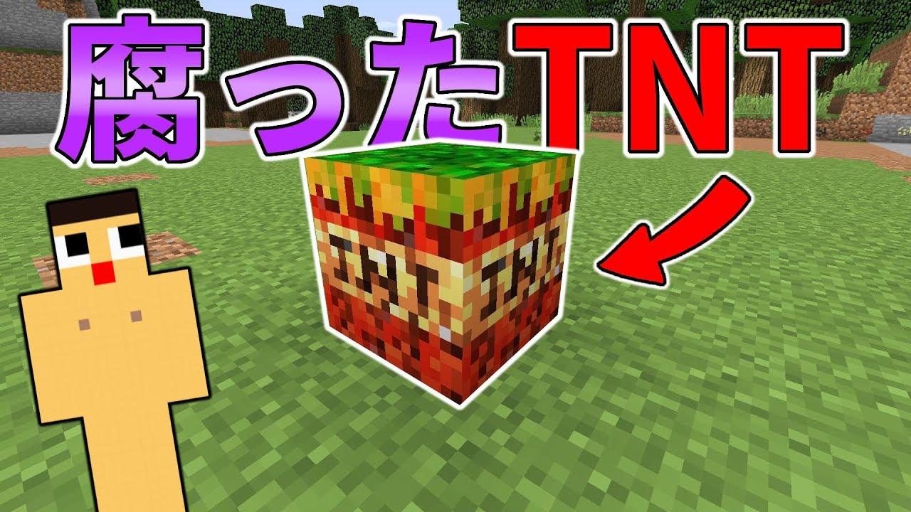 〔マインクラフト〕TNTが腐ってた。爆破できるのこれ…。
