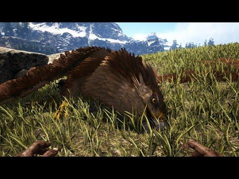 Griffin spawn location! : ARK