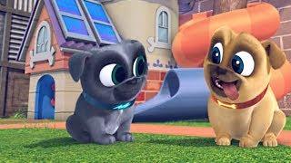 Играем вместе с дружными мопсами 02 Не моргай мультик Disney про щенков