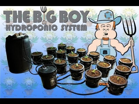 BIG BOY HYDROPONIC SYSTEM 6 PLANT BEST HYDRO KIT SETUP BUCKET HTGSUPPLY    YouTube
