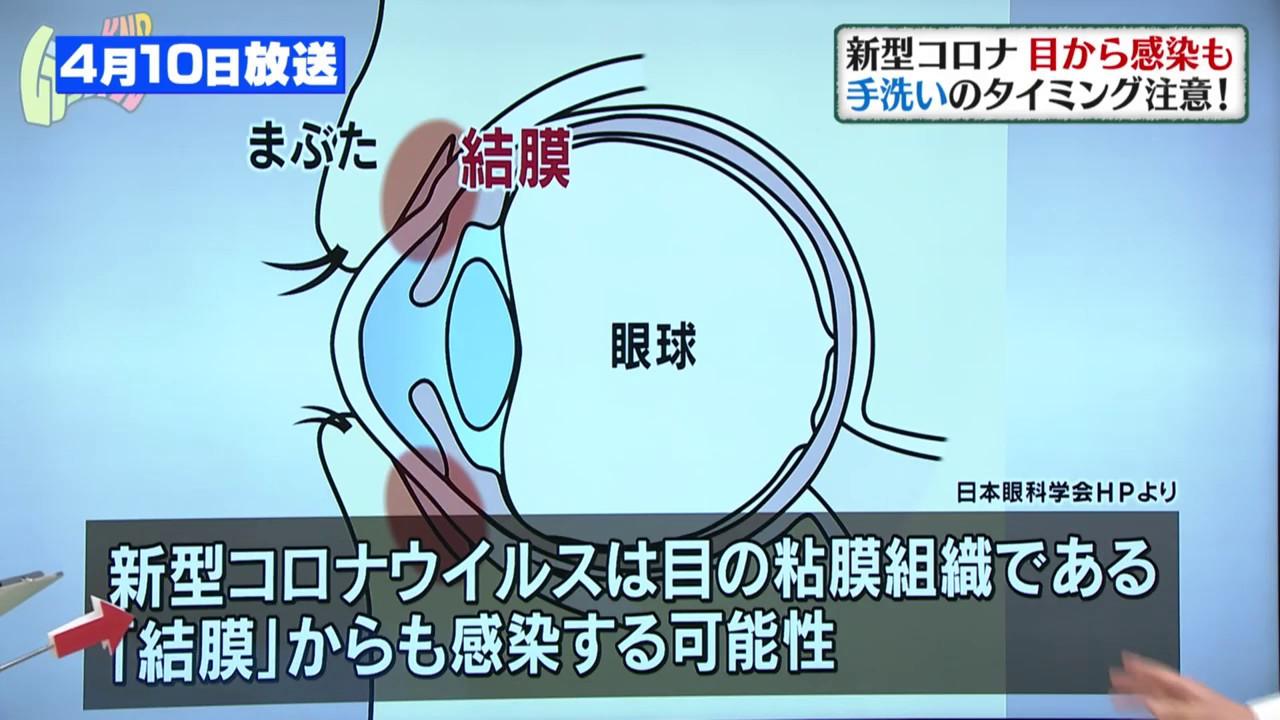 ウイルス 結膜炎 コロナ