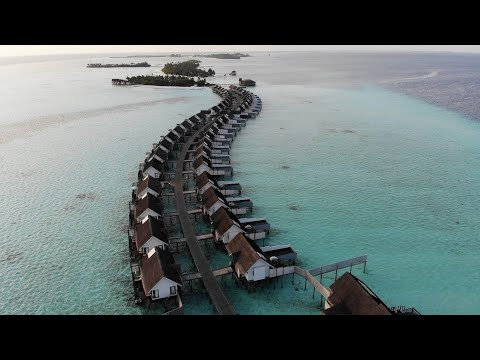 OZEN By Atmosphere At Maadhoo Maldives - Highlights From Jan-2020