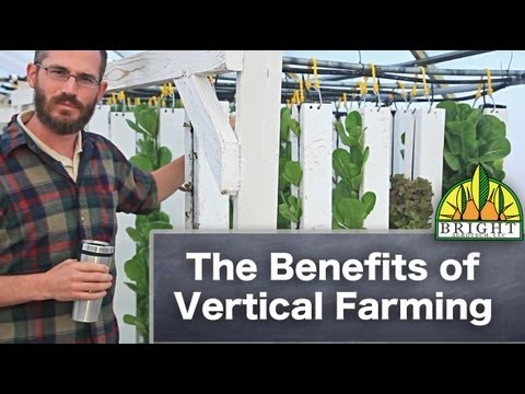 The Benefits Of Vertical Farming Youtube