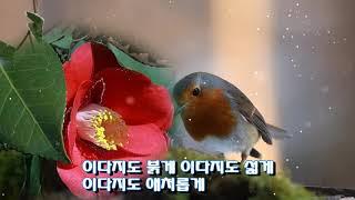 안정희-그리운 정(가사자막)