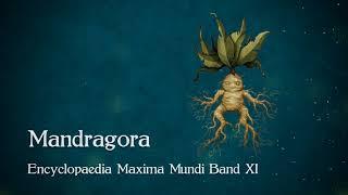 WITCHER Wiki: Mandragora – Encyclopaedia Maxima Mundi Band XI [Audio]
