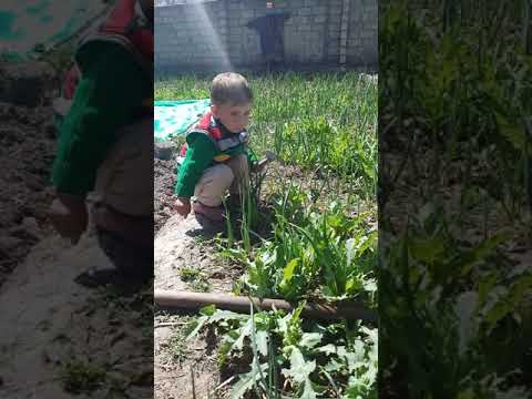 Little agriculturalist on Earth.