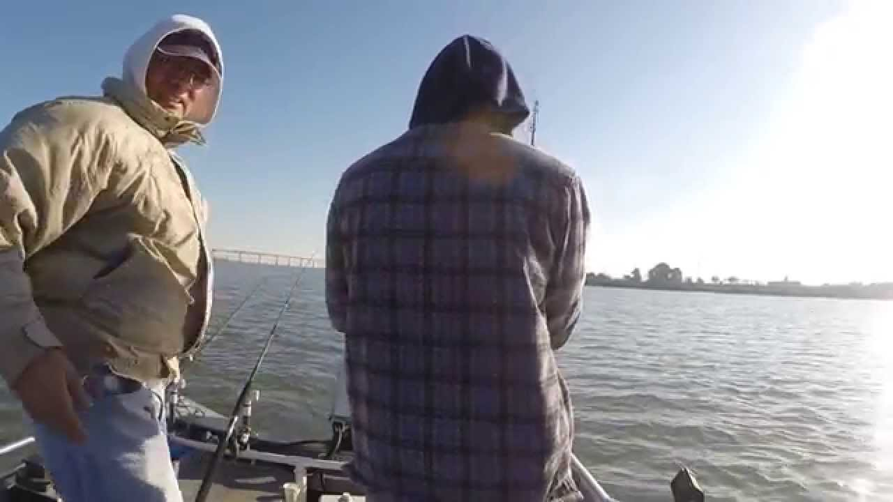 Double hookup california delta striper fishing youtube for Antioch fishing report