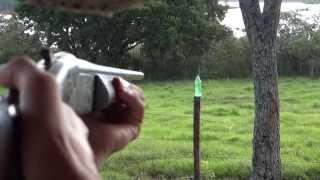 Tiro com espingarda calibre 36 - Cartuch...