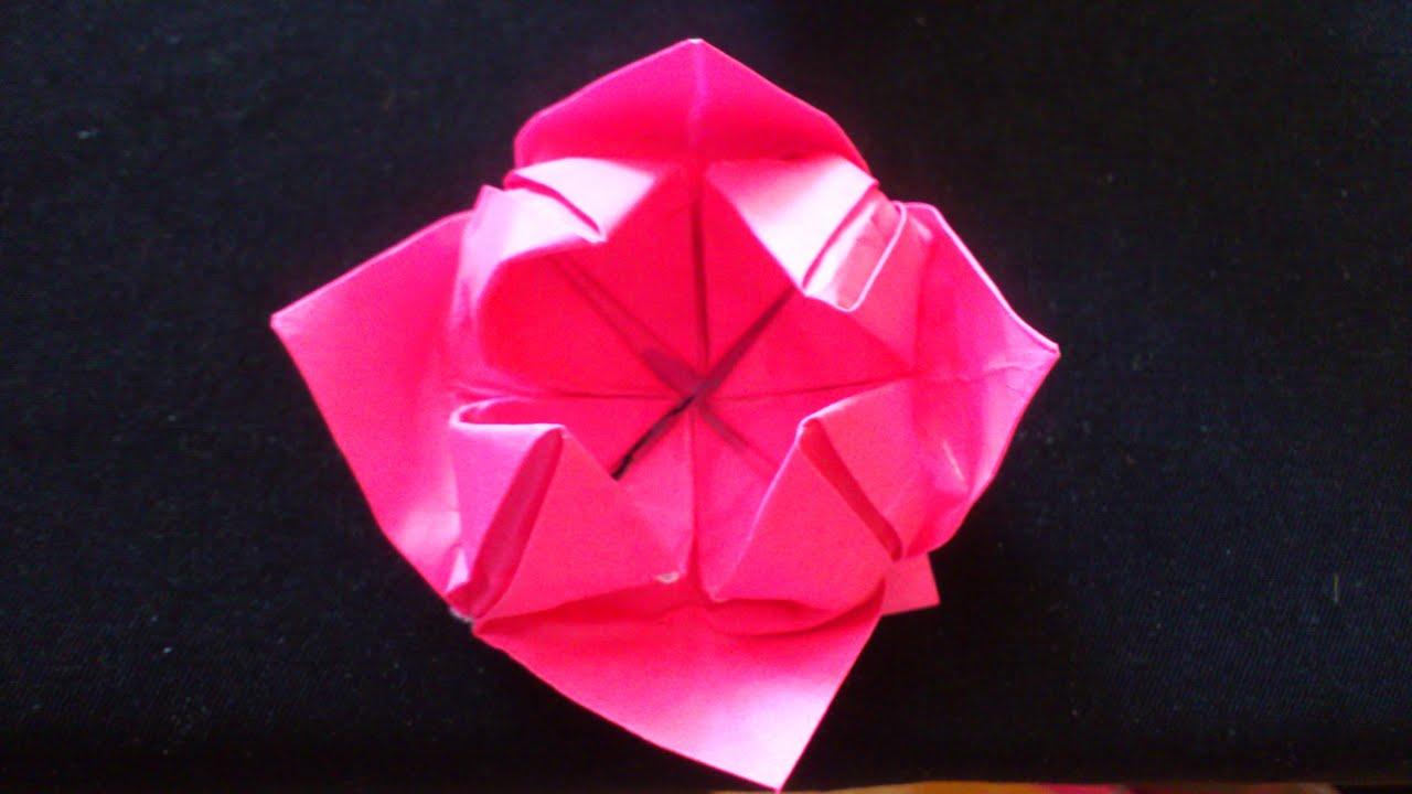 Cara Membuat Origami Bunga Lotus Paling Sederhana