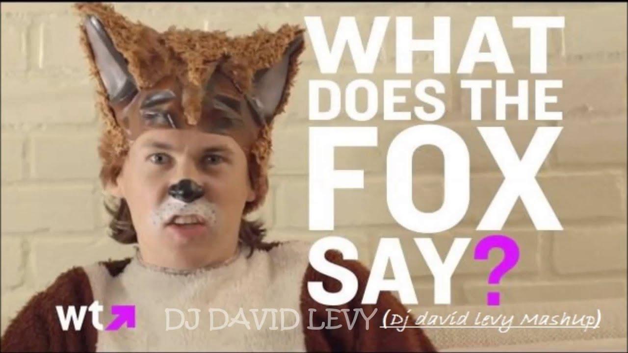 Ylvis - The Fox(Dj david levy MashUp)
