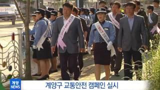 6월 3주 계양구정뉴스_교통안전 캠페인 실시 영상 썸네일