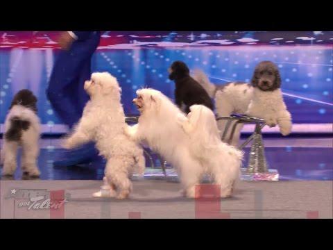 America's Got Talent Season 1-10 winners first audition (HD)