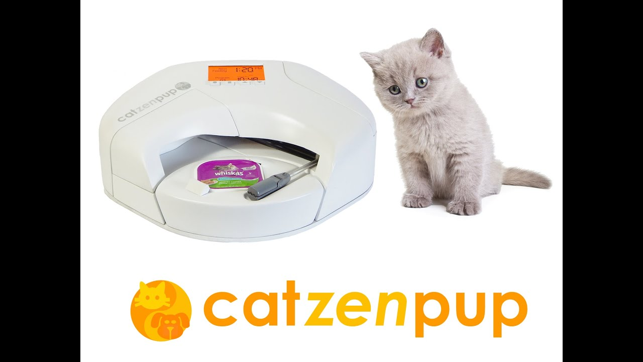 Automatic Wet Food Feeder Cats