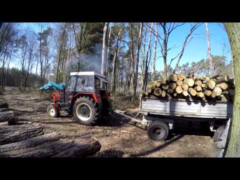 Rolnik Pracuje #2 - Wyjazd po drewno 2016 / Zetor 7211, D47