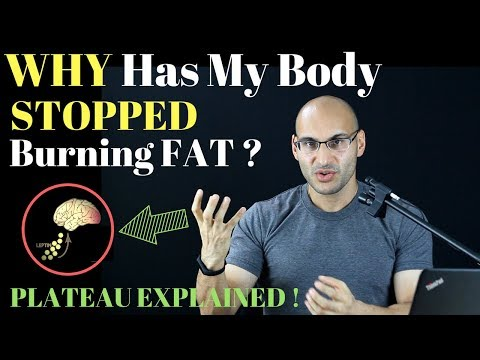 WHY Have YOU STOPPED Losing Fat? Plateaus Explained