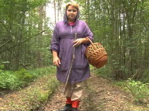 Как не заблудиться в лесу (памятка)