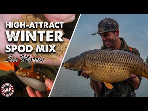 ***Carp Fishing*** Mozza's Winter Tip: High-Attract Spod Mix, DNA Baits