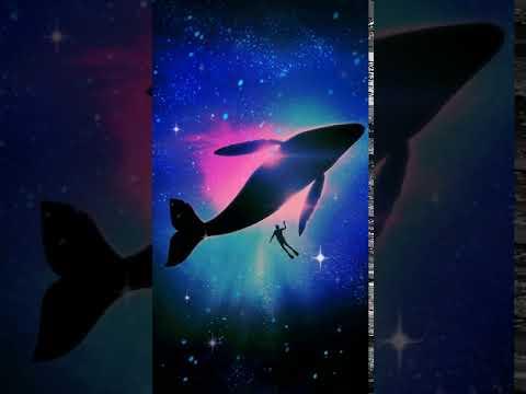 S8 Whale Wallpaper 4k Download Wallpaper Galaxy