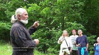 КРАПИВА лечебные свойства - лекция о лечебных травах