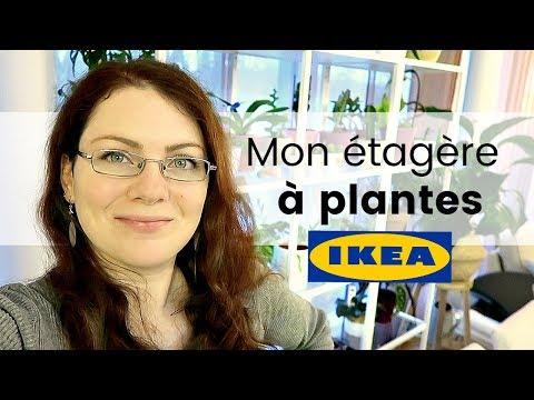 Vlog Plantes - Ma nouvelle plantathèque | l'étagère IKEA pour ma collection de plantes
