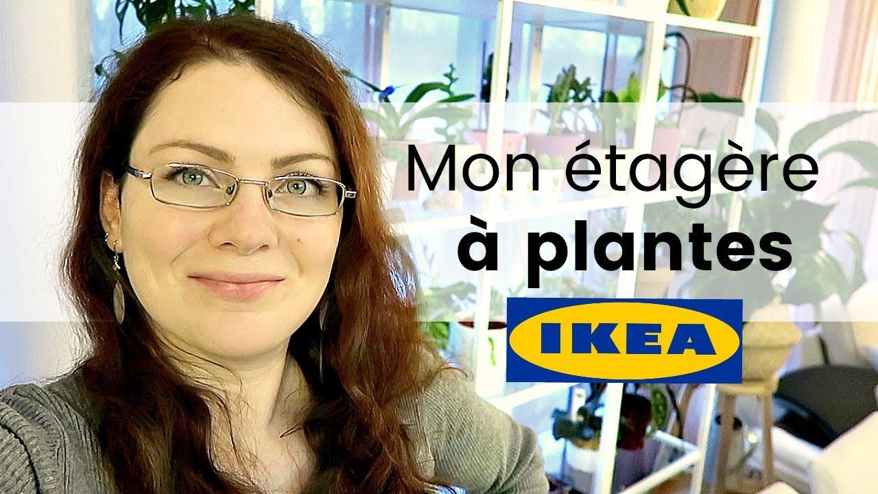 Vlog Plantes Ma Nouvelle Plantatheque L Etagere Ikea Pour Ma Collection De Plantes