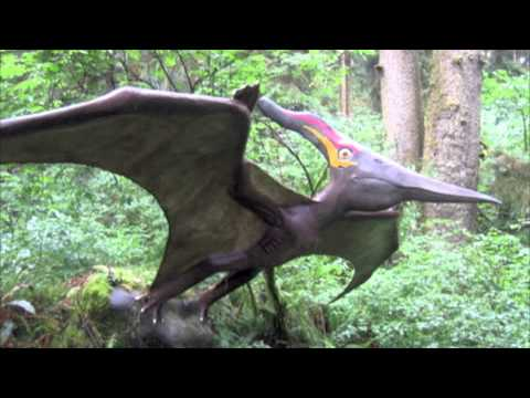 The Pterodactyl Song!
