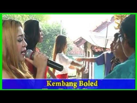 Kembang Boled Lagu Sunda Terbooming