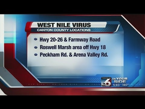 West Nile virus found in Canyon County