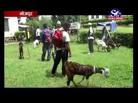 Bhukampa Pidit Lai Rahat - Bhojpur