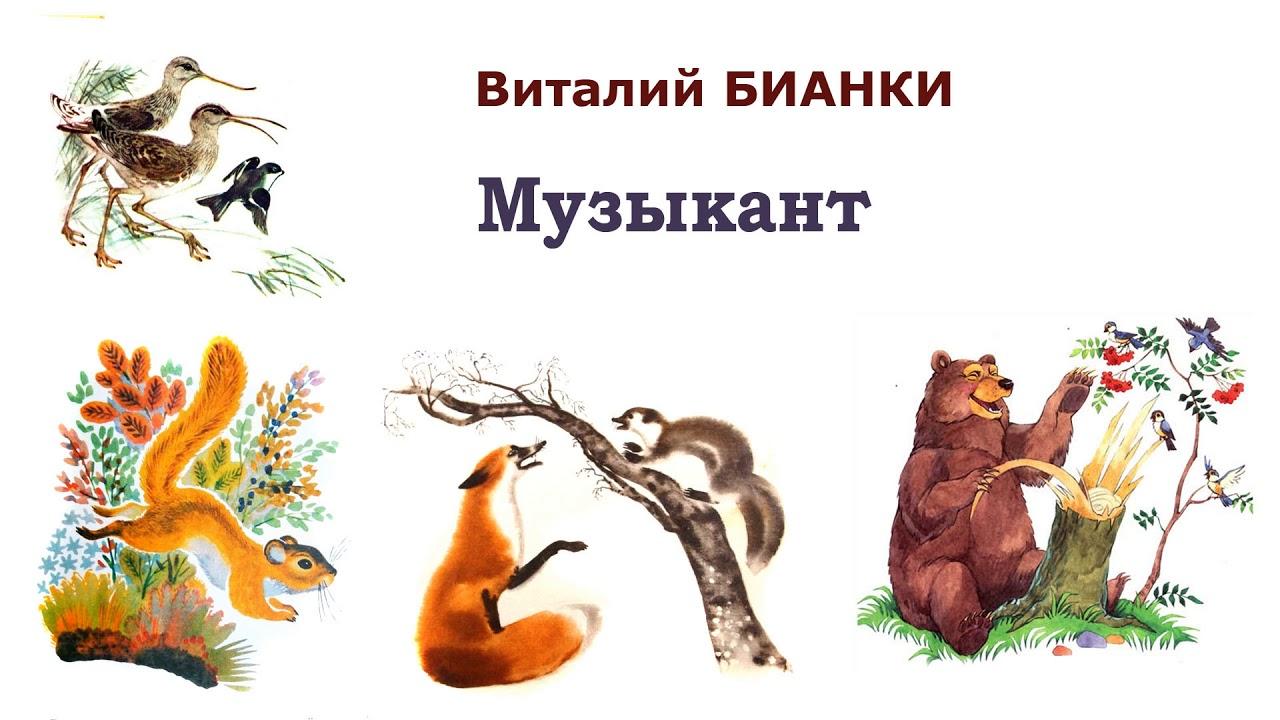 """В.Бианки """"Музыкант"""" - Рассказы и сказки Бианки - Слушать ..."""