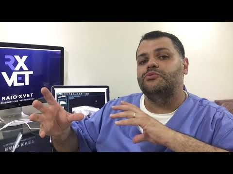 semiologia-radiológica---elaborando-o-diagnóstico