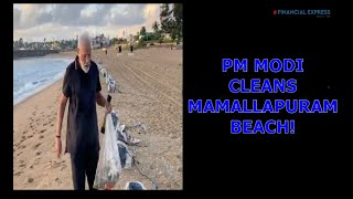 Modi leads by example! Watch PM plogging at Mamallapuram beach during Xi Jinping visit