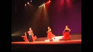 """レビューチーム風 崇城大学市民ホールより """"アパショナード"""" 2010年5月."""
