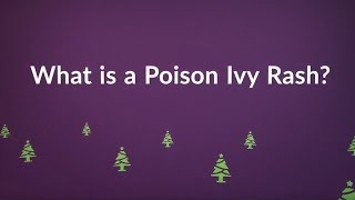 What is a Poison Ivy Rash? (Symptoms, Causes, Treatment, Prevention)