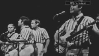 The Beach Boys: Please Let Me Wonder (Live - 1965)