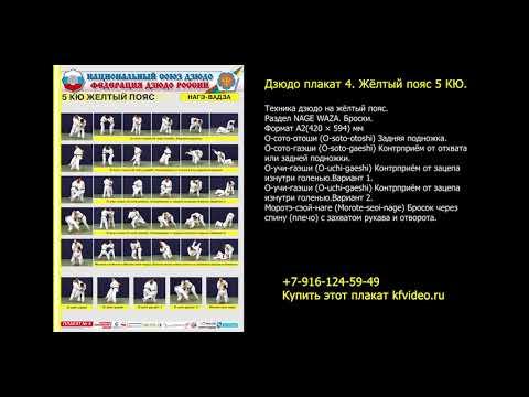 Сдача на пояс по дзюдо. Требования и материалы в плакатах и на видео. kfvideo.ru