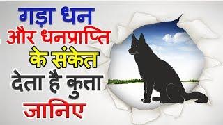 जानिए कुत्ते से जुड़े शकुन अपशकुन | कुत्ता भी खोलता है शगुन-अपशगुन के कई राज