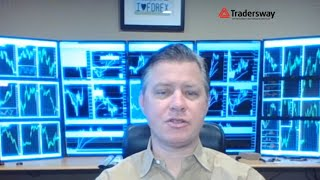 📈 : Forex Trading Live Stream - Forex.Today