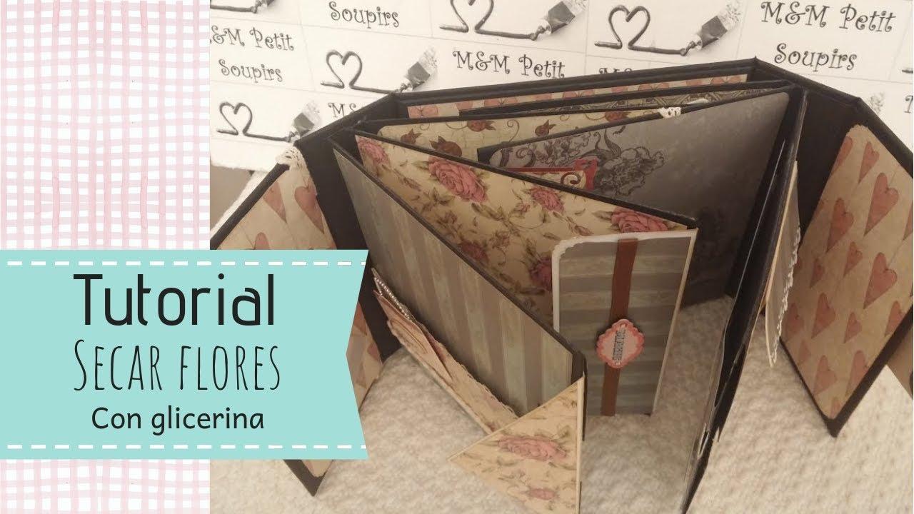 Scrap De Sexta Feira Imagem Pra Facebook Scrap: Tutorial Encuadernación Espina SCRAPBOOKING